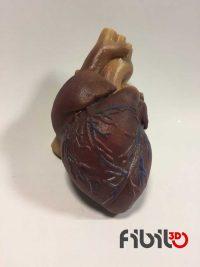 3D Renkli Printer Baskı Kalp